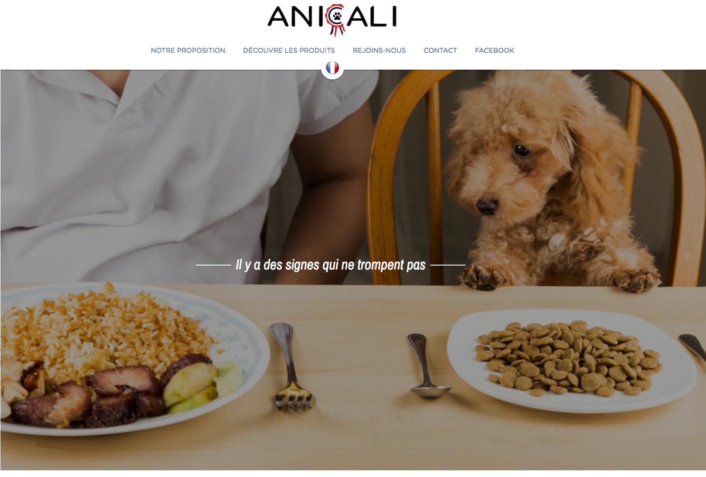 Anicali screenshot