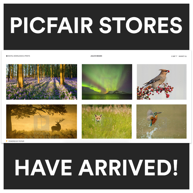Picfair stores have arrived 2